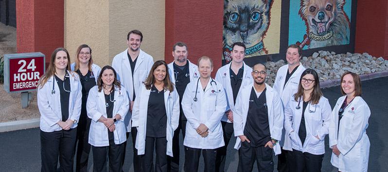 Scottsdale Veterinarians